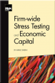 Firm-wide Stress Testing and Economic Capital